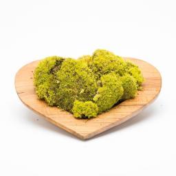 moss-heart-white2_1.jpg