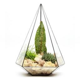 supersize-jewel-terrarium@2x.jpg