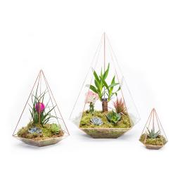 COPPER-MEGA-JEWEL-TERRARIUM-TRIO-ON-WHITE-TRIO-CGEMJEWEL.jpg