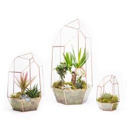 COPPER-MEGA-GEM-TERRARIUM-TRIO-ON-WHITE-TRIO-CGEM.jpg