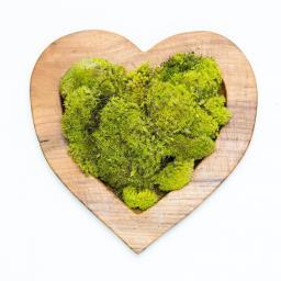 moss-heart_1.jpg