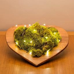 moss-heart-lights_1.jpg