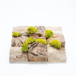 moss-square-single2.jpg