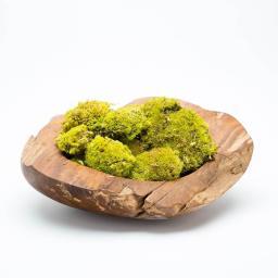 moss-bowl-white.jpg