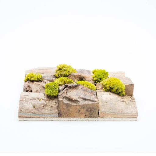 moss-square-single3.jpg