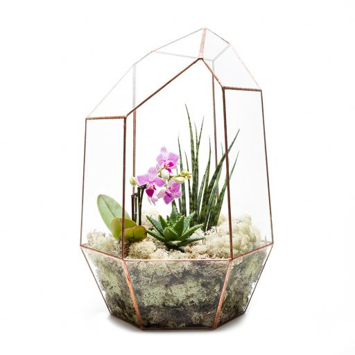 Supersize Copper Gem Terrarium
