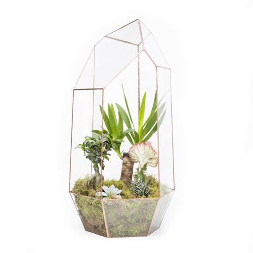 Mega Copper Gem Terrarium