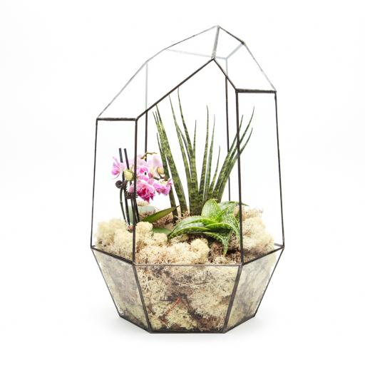 Supersize Aztec Gem Terrarium
