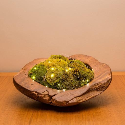 moss-bowl-lights.jpg