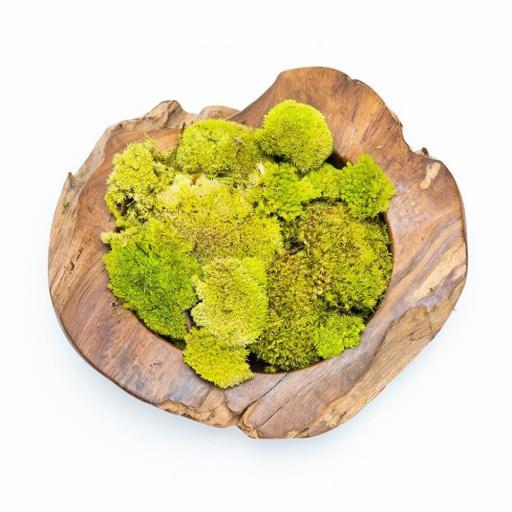 moss-bowl.jpg
