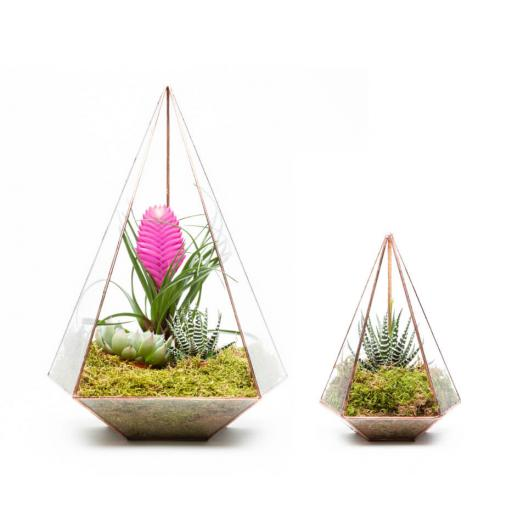 Duo Jewel Terrarium