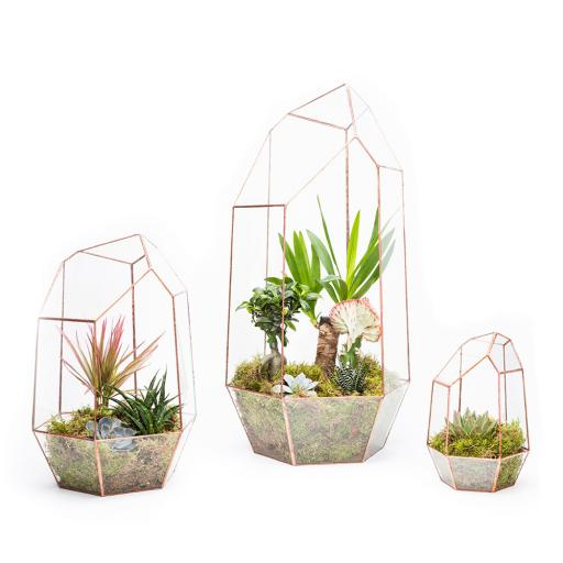Trio Copper Gem Terrarium