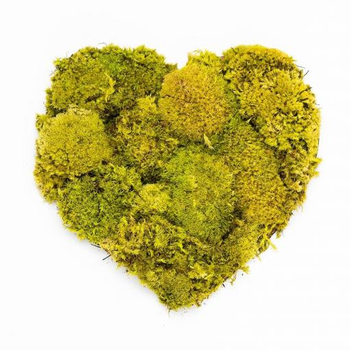 Botanical Grande Moss Art Heart