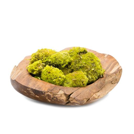 Botanical Moss Art Grande Bowl