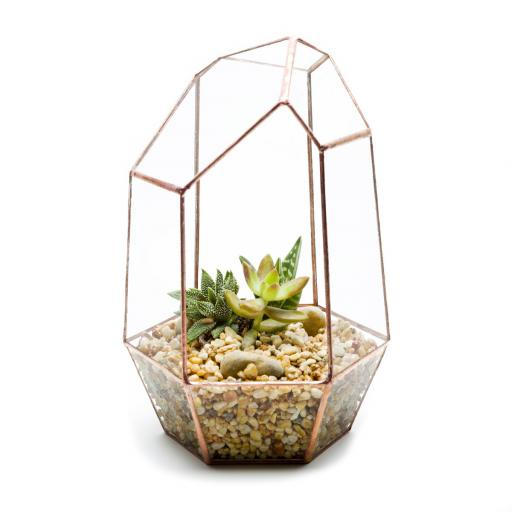 Copper Gem Terrarium