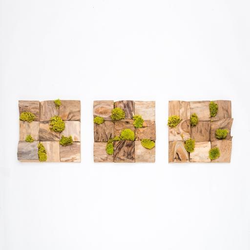 Trio Petite Wooden Moss Art Square