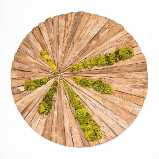 Grande Wooden Moss Art Round
