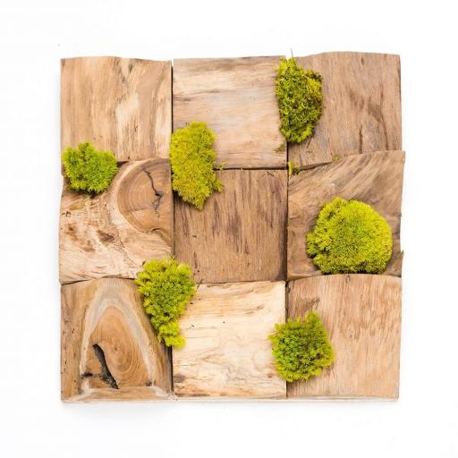 Petite Wooden Moss Art Square