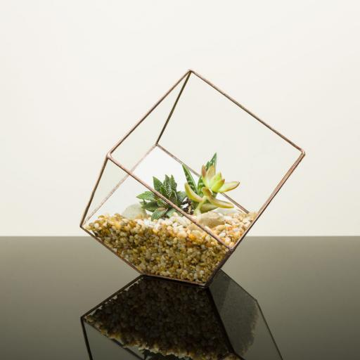 Copper Cube Terrarium