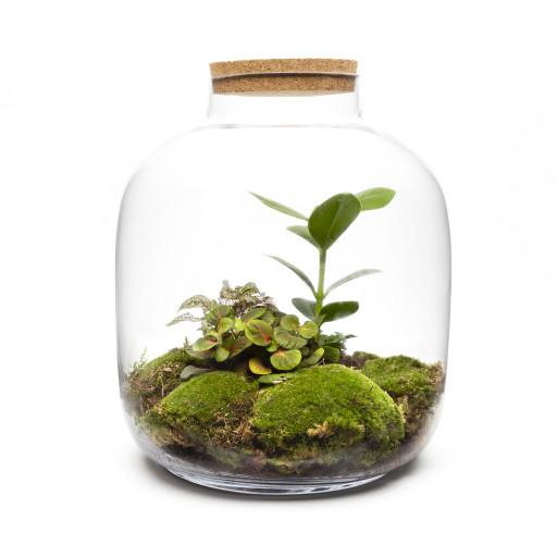 Urban-Botanist-2019-294-Edit.jpg