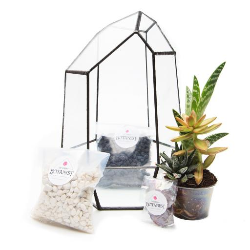 DIY Aztec Gem Terrarium Kit