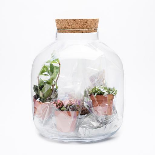 Replacement Kit for Grande Ecosystem