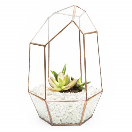 Copper Gem Terrarium White