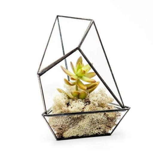 Mini Succulent House
