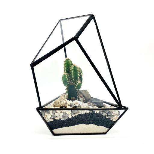 DIY Cactus House Terrarium
