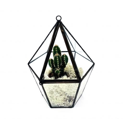 Mini Cactus Lantern