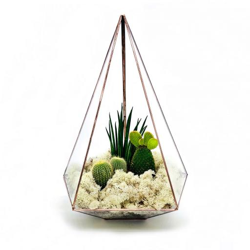 Supersize Copper Jewel Cacti Terrarium