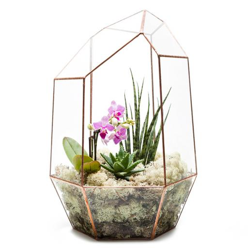 Supersize Copper Aztec Gem Terrarium