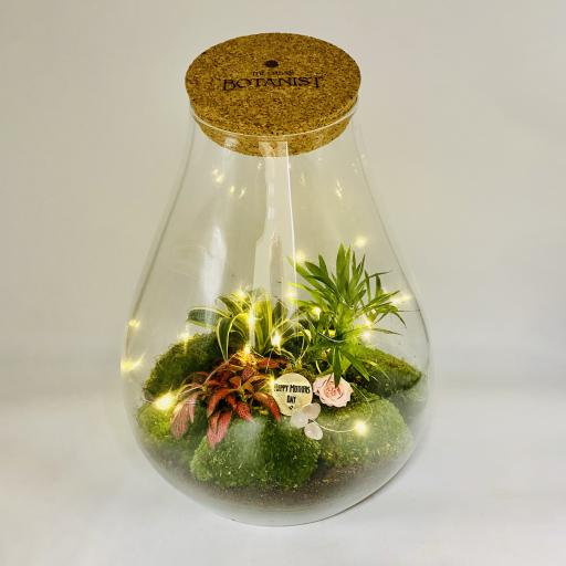 Mothers Day Teardrop Ecosystem