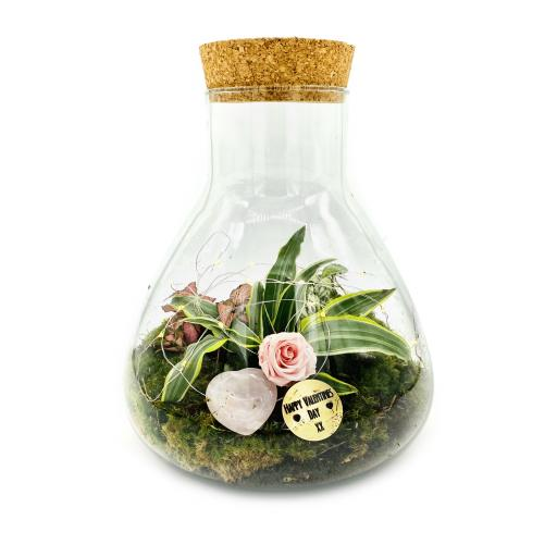 Mothers Day Baby Petite Ecosystem