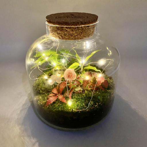 Mothers Day Baby Grande Ecosystem