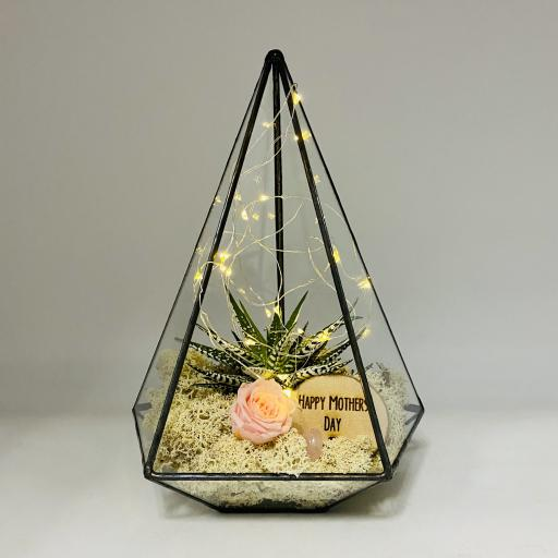 Mothers Day Jewel Terrarium