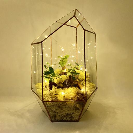 Bonsai Supersize Copper Gem Terrarium