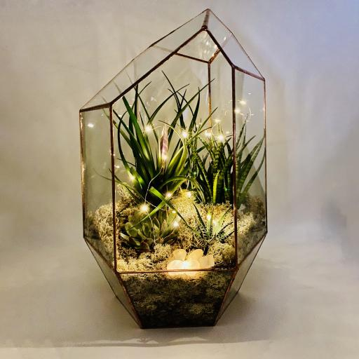 Rose Quartz Supersize Copper Gem Terrarium