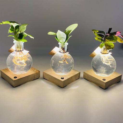Hydroponic Petite Bulb Vase Trio