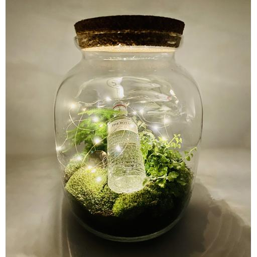 Father's Day GIN Biome Ecosystem