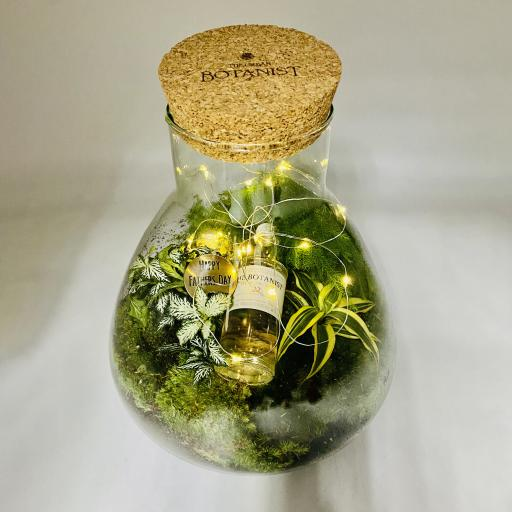 Father's Day Baby Petite GIN Ecosystem