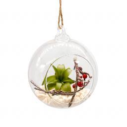 Airplant and Berry Xmas Bauble.jpg