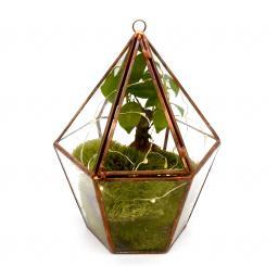 Copper Bonsai Lantern 2.jpg