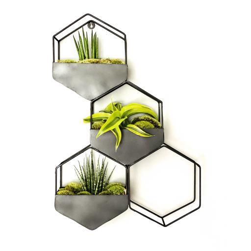 Hexagrande Succulent Living Wall Planter