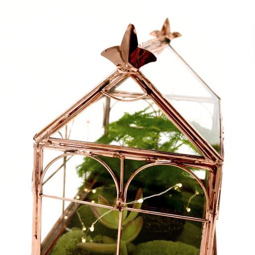 Rose Gold Succulent Greenhouse close-up.jpg