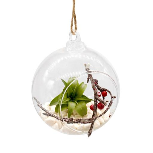 Airplant and Berry Xmas Bauble 2.jpg