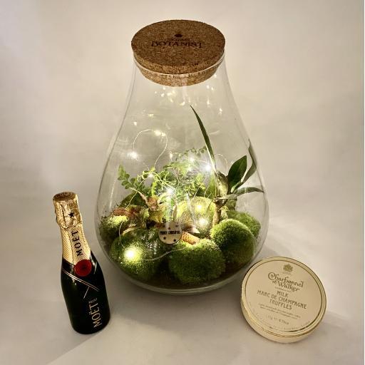 Teardrop Ecosystem Gift Set