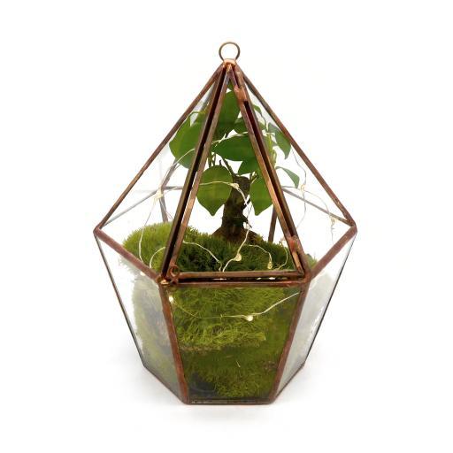 Copper Bonsai Lantern .jpg