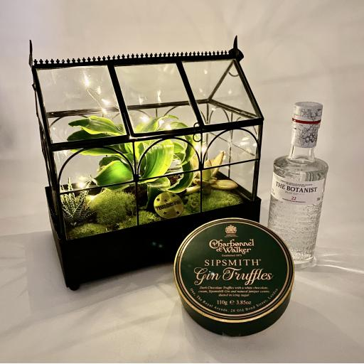 Limited Edition Wardian Succulent Greenhouse Gift Set